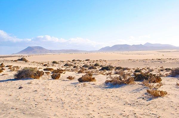 Fuerteventura Foto Landschaft Idylle