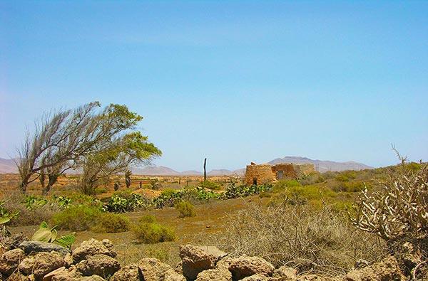 Fuerteventura Foto Landschaft Idylle 2
