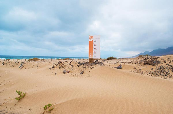 Fuerteventura Foto Strand Cofete